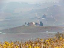Träda i Po-dalen med en tjock dimma arkivfoton