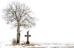 Trädans-kors med korpsvart Arkivfoto