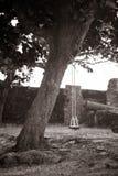 Trädbänk arkivbild