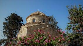 Trädblomma och forntida liten kyrka arkivfoton