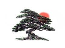 Trädbonsai som är svartvit, teckningspenna Royaltyfria Bilder