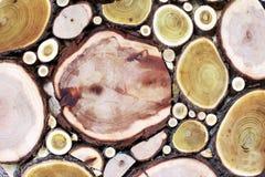 Trädcirklar i wood snitt för tappning Royaltyfri Fotografi