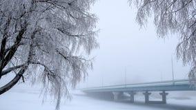 Träden som täckas med frost bron i dimman i bakgrunden Royaltyfri Fotografi