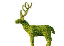 trädet är en hjort på en vit bakgrund. Royaltyfri Bild