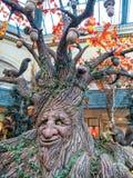 Trädet är mänskligt Arkivbilder