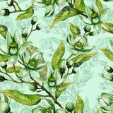 Trädet blommar på en fatta Sömlös modell för vår Vårkrusidull Ljus - grön bakgrund med kontur för Adobekorrigeringar hög för måln Royaltyfri Bild