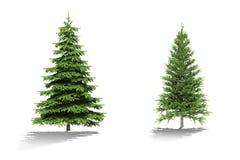 trädet 3d framför på vit bakgrund Fotografering för Bildbyråer