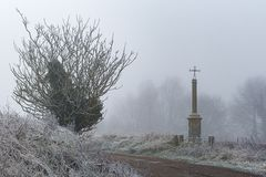Trädet, dimman och korset royaltyfri foto