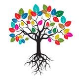 Trädet med färg spricker ut och rotar stock illustrationer