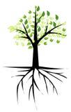 Trädet med rotar royaltyfri illustrationer