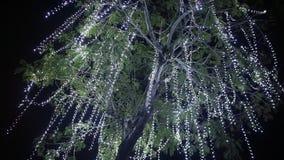 Trädet som hängs med hängande vita girlander som bakgrund är kan det använda julillustrationtemat lager videofilmer