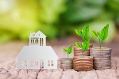 Trädet som växer på mynt, staplar med den pappers- husmodellen för att sparande ska köpa ett hus arkivbilder