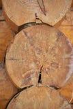 trädetaljhus Royaltyfria Foton
