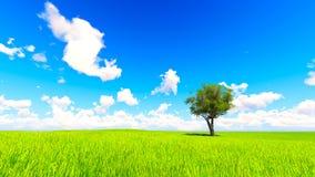 Trädfältet av gräs och perfekt himmel landskap tolkningen 3D Fotografering för Bildbyråer