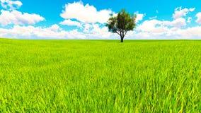Trädfältet av gräs och perfekt himmel landskap tolkningen 3D Arkivbild