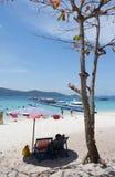 Trädfilial, blå havsfrikändhimmel, semestertider för att koppla av royaltyfri foto