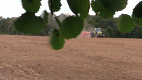 Trädfilialen med sidor flyttar sig, och traktoren gödslar suggafältet arkivfilmer