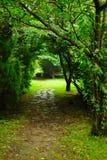 trädgård Royaltyfri Bild