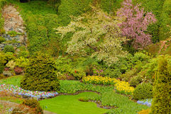 trädgård 2 Arkivfoton