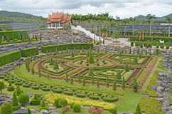 Trädgård. Royaltyfria Foton
