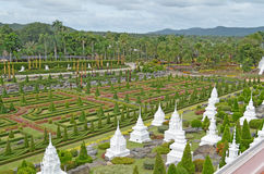 Trädgård. Royaltyfri Foto