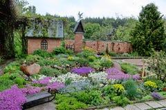 Trädgård Arkivbild