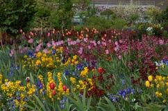 Trädgård 16 Arkivfoto