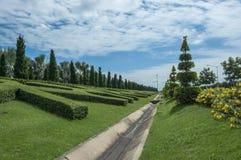 Trädgård fotografering för bildbyråer