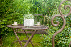 Trädgård arkivbilder