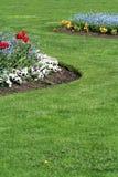 trädgård Royaltyfri Fotografi