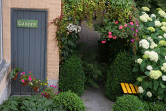 trädgård Arkivfoto