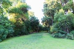 Trädgård - Aten, Grekland Royaltyfri Fotografi