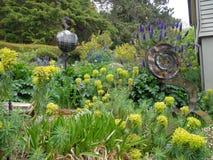 Trädgård av Autralia Arkivbild