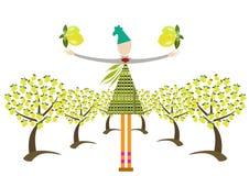 trädgård av citroner Arkivfoton