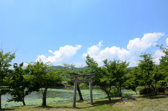 Trädgård av den Daikakuji templet, Kyoto Japan Arkivbild