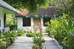 Trädgård av ett maldivian hus royaltyfria foton