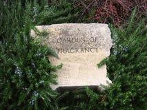 Trädgård av fragnancen Arkivfoton