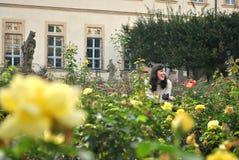 Trädgård av glädje Arkivfoto