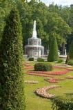 Trädgård av Peterhof Royaltyfri Foto