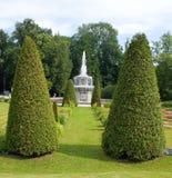 Trädgård av Peterhof Royaltyfri Bild