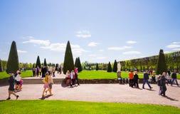 Trädgård av Peterhof i St Petersburg, Ryssland. Arkivbilder