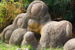 Trädgård av stenar från ammonit på kusten av sjön Arkivfoto