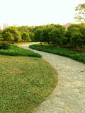 Trädgård bana till och med trädgården Arkivfoto