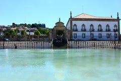 Trädgård Castelo Branco, Portugal Royaltyfri Foto