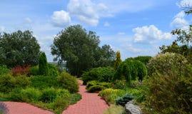 Trädgård för att koppla av Royaltyfri Foto