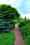 Trädgård för att koppla av Royaltyfri Fotografi