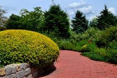 Trädgård för att koppla av Royaltyfria Foton