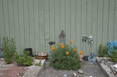 Trädgård för blomma för främre gård för sandask Royaltyfria Foton