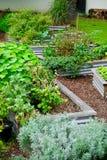 Trädgård för blommandeNeighbourhoodgemenskap Arkivfoto