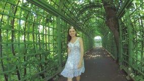 Trädgård för gräsplanrumsommar arkivfilmer